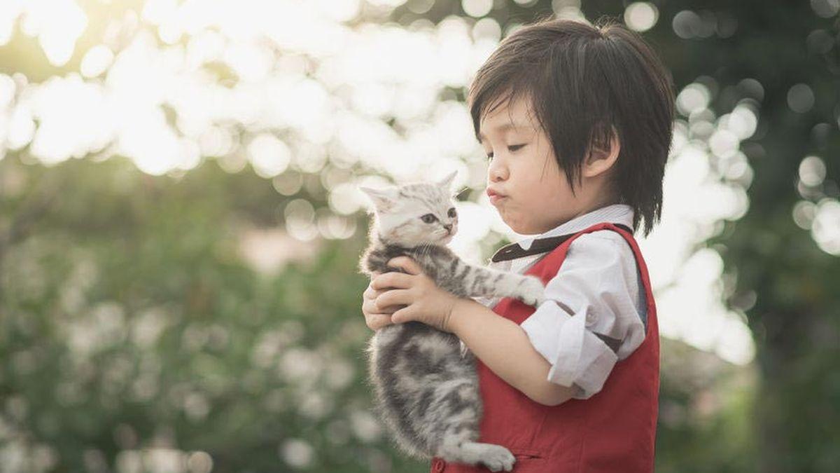 Hewan Layak Dihormati Sama Seperti Manusia